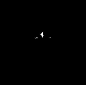 brue baukol logo black design by Stortz Design